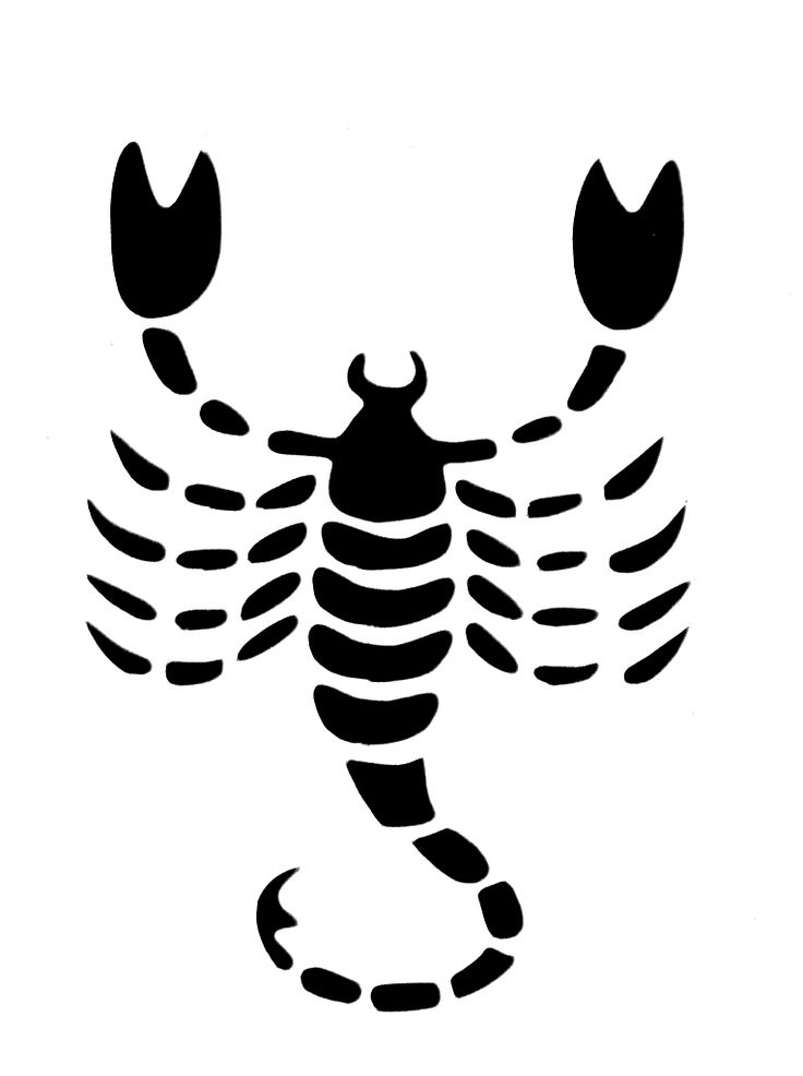 Conception de tatouage de scorpion